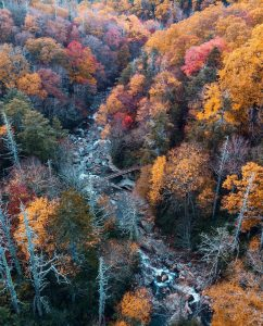 Aerial of fall foliage in Eastern Tennessee